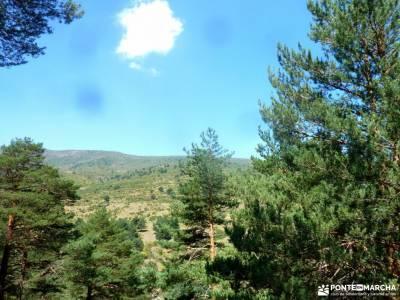 Sestil de Maillo-Mojonavalle-Canencia; senderismo en familia irati bosque viaje exotico